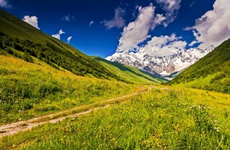 shkhara: Alpine meadows at the foot of  Mt. Shkhara. Upper Svaneti, Georgia, Europe. Caucasus mountains. Beauty world.