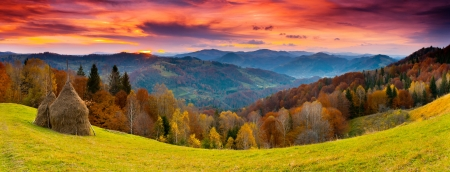 fall landscape: the mountain autumn landscape with colorful forest