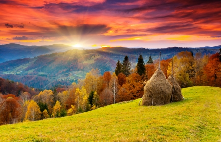 nature landscape: the mountain autumn landscape with colorful forest