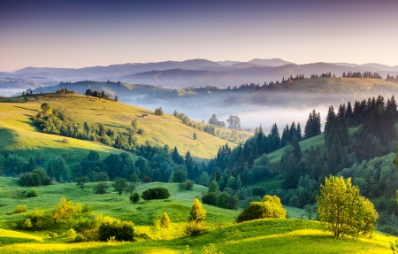 carpathian mountains: Foggy summer morning in the mountains. Carpathian, Ukraine, Europe. Beauty world.