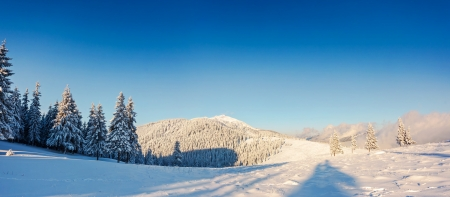 Fantastic winter landscape. Blue sky. Panoramic landscape. Carpathian, Ukraine, Europe. Beauty world.  photo