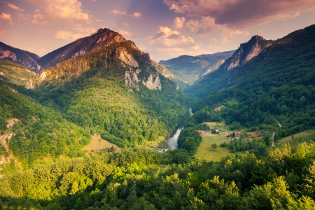 tara: Fantastic view Tara river gorge - is the second biggest canyon in the world and the biggest one in Europe in the national park Durmitor in Montenegro. Balkans. Beauty world.