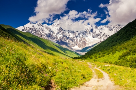shkhara: Alpine meadows at the foot of  Mt. Shkhara. Upper Svaneti, Georgia, Europe. Caucasus mountains. Beauty world.