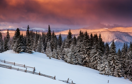 hoar: Majestic sunrise in the mountains landscape.Carpathian, Ukraine. Stock Photo
