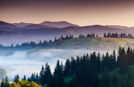 Majestic Sonnenuntergang in den Bergen Landschaft. Dramatischer Himmel. Karpaten, Ukraine, Europa. Beauty Welt.