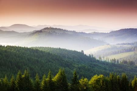 carpathian mountains: Majestic sunset in the mountains landscape. Carpathian, Ukraine, Europe.