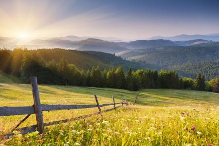 Majestic tramonto nel landscape.Carpathian montagne, Ucraina. Archivio Fotografico - 22423887