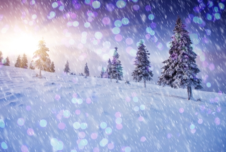 christmas cover: A frosty and sunny day is in mountains. Christmas abstract bokeh Stock Photo