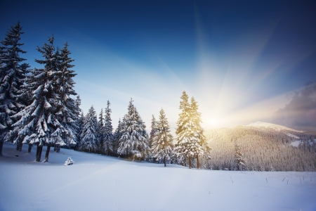 rime: Majestic sunset in the winter mountains landscape. HDR image Stock Photo