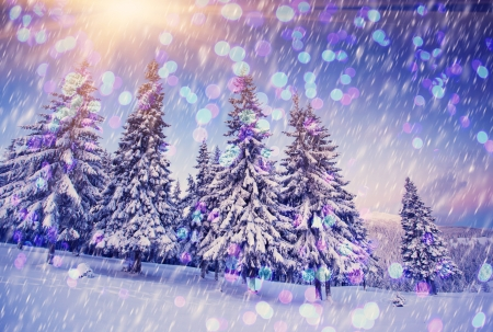 winter wonderland: A frosty and sunny day is in mountains. Christmas abstract bokeh Stock Photo