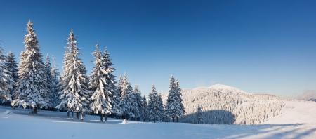 Een ijzige en zonnige dag is in bergen