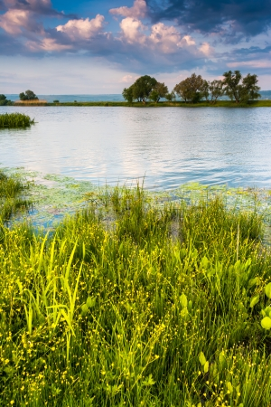 sinuous: Beautiful view of sinuous river in summer. Southern Buh River, Ukraine, Europe. Beauty world.