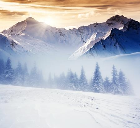Fantastic evening winter landscape. Dramatic overcast sky. Creative collage. Beauty world. Stock Photo