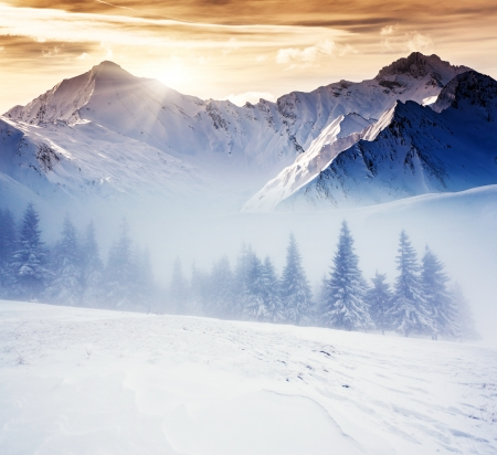 winter evening: Fantastic evening winter landscape. Dramatic overcast sky. Creative collage. Beauty world.