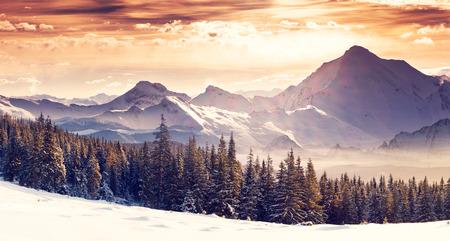 paisajes: Fantástico paisaje de invierno por la noche. Cielo nublado dramático. Collage creativo. Mundo de la belleza.