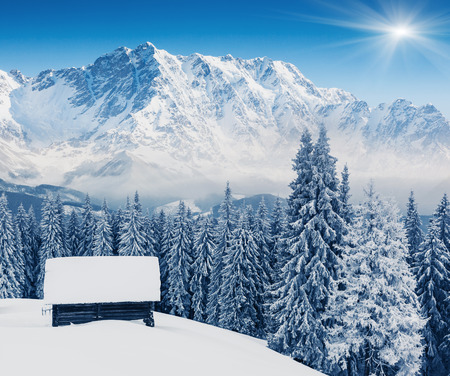Fantastic winter landscape and blue sky. Creative collage. Beauty world. photo