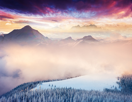 Fantastic winter landscape. Colorful overcast sky. Creative collage. Beauty world. photo