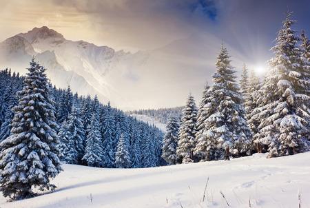 invierno: Noche fantástica paisaje de invierno. Cielo nublado dramático. Collage creativo. Mundo de la belleza.