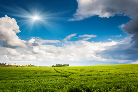 cumulus: Beautiful sunny day in the field with blue sky. Overcast sky. Ukraine, Europe. Beauty world.