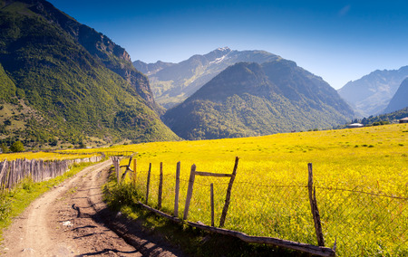 Beautiful view of alpine meadows in the village Zhabeshi. Upper Svaneti, Georgia, Europe. Caucasus mountains. Beauty world. photo