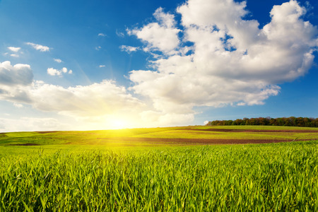 dia soleado: Hermoso día soleado en el campo con el cielo azul. Cielo nublado. Ucrania, Europa. Mundo de la belleza. Foto de archivo
