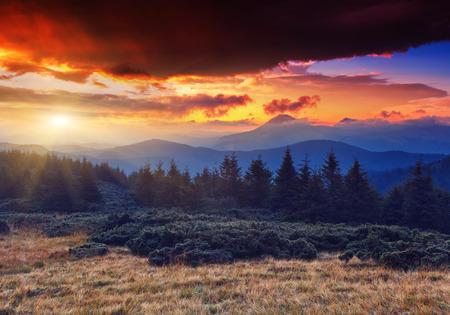 幻想的な朝の山の風景。カラフルな曇天。カルパチア、ウクライナ、ヨーロッパ。美の世界。