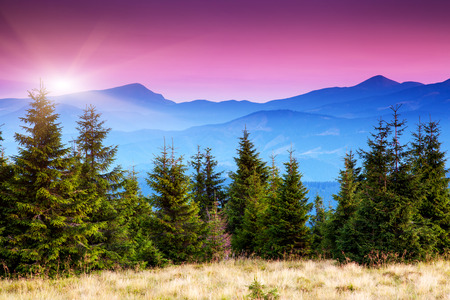 Majestic morning mountain landscape with colorful cloud. Pink sky. Carpathian, Ukraine, Europe. Beauty world. Stock Photo