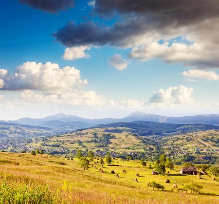 rick: Fantastic yellow hills with blue sky. Carpathian, Ukraine, Europe. Beauty world. Stock Photo