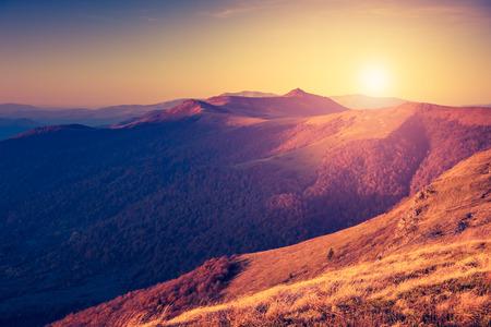 paisaje vintage: Hermoso d�a soleado en paisaje de monta�a. C�rpatos, Ucrania, Europa.