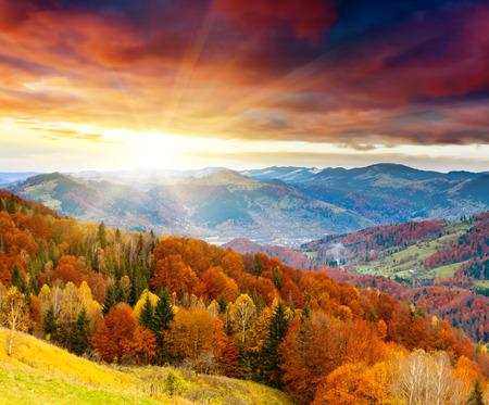カラフルな森と山の秋の風景