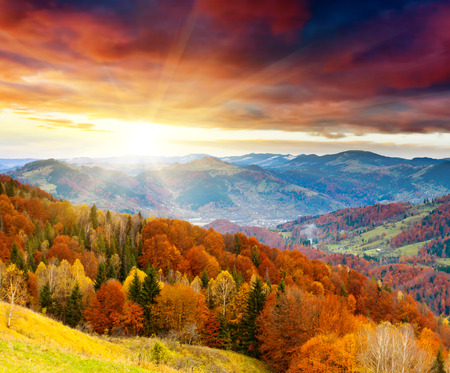 de berg herfst landschap met kleurrijke bos