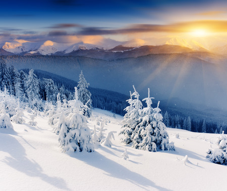 sapin neige: Coucher de soleil majestueux dans le paysage d'hiver montagnes. Ciel dramatique.