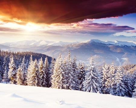 fairytale background: Fantastic morning mountain landscape. Overcast colorful sky. Carpathian, Ukraine, Europe. Beauty world. Stock Photo