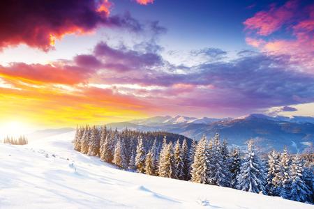 환상적인 아침 산 풍경입니다. 흐린 다채로운 하늘. 대로, 우크라이나, 유럽. 뷰티 세계.