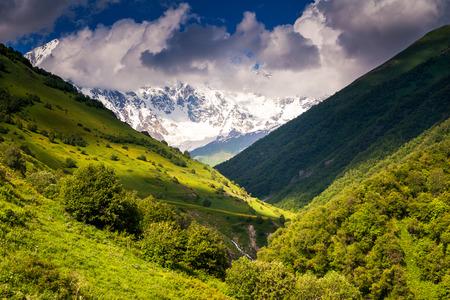 shkhara: Beautiful alpine meadows at the foot of Mt. Shkhara. Dramatic overcast sky. Upper Svaneti, Georgia, Europe. Caucasus mountains. Beauty world.