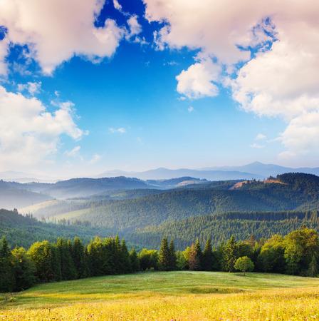 cumulus cloud: Beautiful sunny day is in mountain landscape. Carpathian, Ukraine, Europe.
