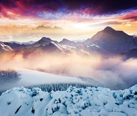 Fantastisch winterlandschap. Kleurrijke bewolkte hemel. Creatieve collage. Beauty wereld.