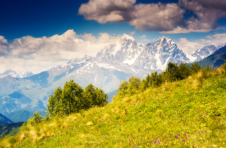 caucasus: Majestic view of alpine meadows with blue sky at the foot of  Mt. Ushba. Upper Svaneti, Georgia, Europe. Caucasus mountains. Beauty world.