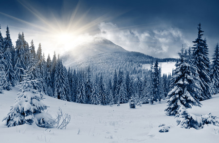 mountains and sky: Beautiful winter landscape with snow covered trees Stock Photo