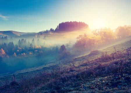 朝の空の下で幻想的な日当たりの良い丘。カルパチア、ウクライナの劇的な風景 写真素材