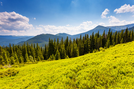 Beautiful sunny day is in mountain landscape photo