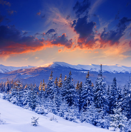 christmas landscape: majestic sunset in the winter mountains landscape