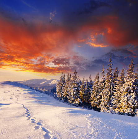 frozen winter: majestic sunset in the winter mountains landscape