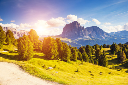 alp: Great view on the Sassolungo (Langkofel) and Sella group, valley Gardena. National Park Dolomites, South Tyrol. Location Ortisei, S. Cristina and Selva, Italy, Europe. Dramatic scene. Beauty world. Stock Photo