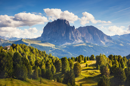 selva: Great view on the Sassolungo (Langkofel) group, valley Gardena. National Park Dolomites, South Tyrol. Location Ortisei, S. Cristina and Selva Gardena, Italy, Europe. Dramatic scene. Beauty world.