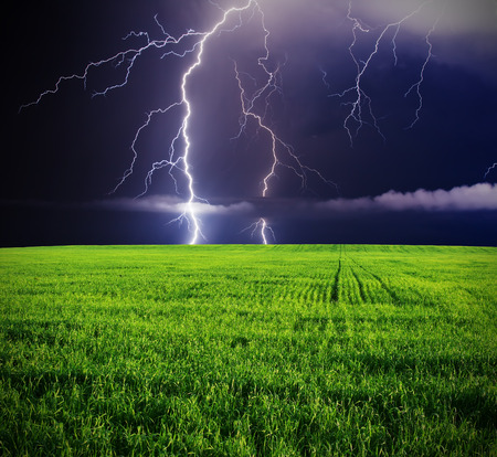 lightning bolt: Thunderstorm with lightning in green meadow.