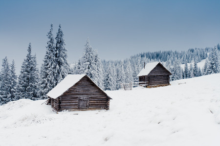 snow covered mountain: Trees covered with hoarfrost and snow in mountains. Mountain house Stock Photo