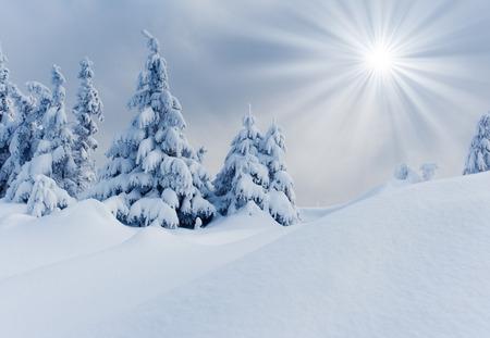 산에 흰 서리와 눈으로 덮여있다.
