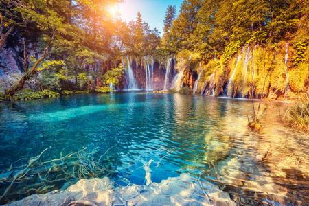 Vista majestosa sobre águas turquesas e vigas ensolaradas no Parque Nacional dos Lagos Plitvice, Croácia