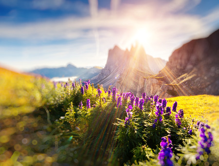 odle: Great view on the Odle - Geisler group. National Park valley Val Gardena. Dolomites, South Tyrol. Location Ortisei, Italy Stock Photo